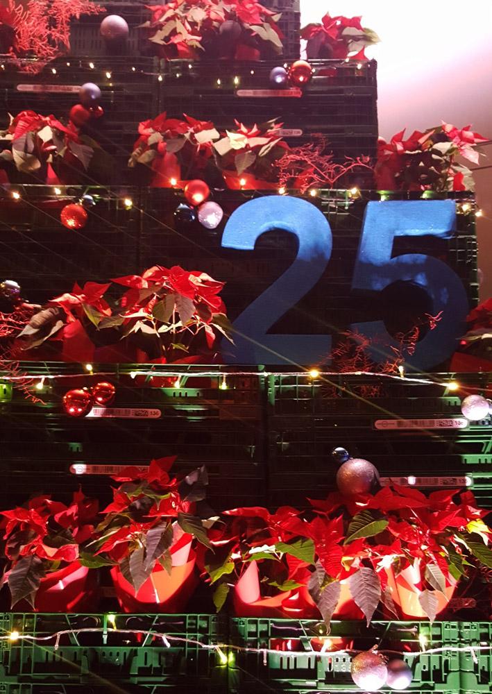 Decoracion con cajas evento de navidad